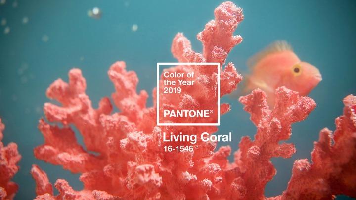 Living Coral: a cor de2019